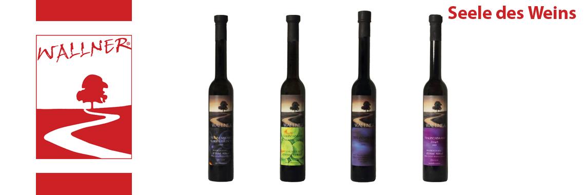 Seele des Weins